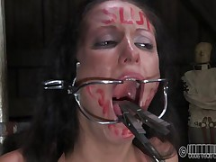 She wanted to to be abased and punished just like a slut that she is. Well Hailey got what she wanted and now she's tied up on that chair and disgraced. The executor wrote slut on her forehead and opened her mouth with a device. Wonder why? Then stick around and find out!